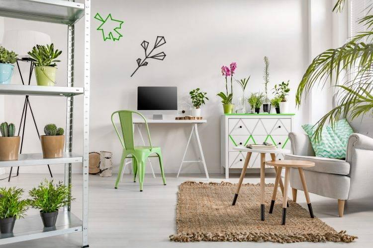 5-opções-de-plantas-para-decoração-do-seu-apartamento-Brascon-04